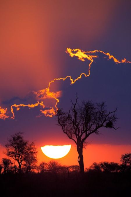 Dramatic sunset near Satara camp in Kruger National Park,South Africa